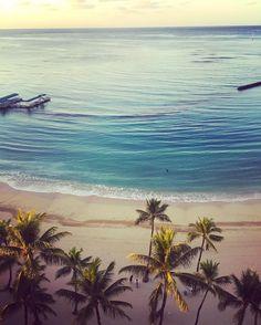 #HAWAII you had me at #Aloha  #morninginhawaii #waikikibeach #islandlife #islandtime #palmtrees #beach #beachlife #watersandsun #roomwithaview #view #vacation #traveller #EyeRanitiTravel #eyeraniticoasttocoast