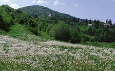 Park prirode Žumberak - Samoborsko gorje - Parkovi Hrvatske