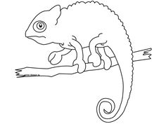 Chameleon Coloring Pages - Free Printables | Chameleons, Reptiles ...
