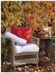 Outdoor Spaces, Outdoor Living, Cozy Corner, Autumn Garden, Autumn Day, Fall Season, Outdoor Furniture, Outdoor Decor, Live Life
