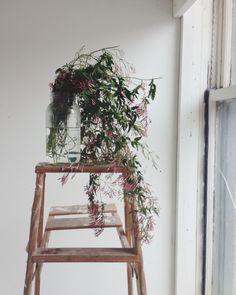 jasmine at the studio // briar winters