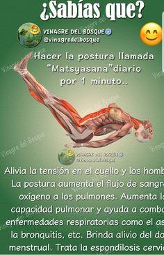 Learn Ashtanga Yoga For Strength And Flexibility - Yoga breathing Kundalini Yoga, Ashtanga Yoga, Yoga Meditation, Yoga Flow, Yoga Anatomy, Yoga Breathing, Yoga Mantras, Sup Yoga, Yoga Posen