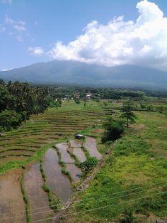 Mount Benahaw   Quezon Province.