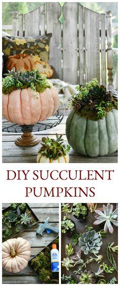 DIY Succulent Pumpkin Centerpiece | ©homeiswheretheboatis.net #pumpkins #succulents #DIY