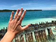 Gimme five! ✋���� #honeymoon #justmarried #married #este #frenk #love #travel #belize #starfish #island #caribbean #caribbeansea #travelgram #travelphotography #beautifuldestinations #beautifulday #nikonphotography #nikon #iamnikon #instapic #instaphoto #photooftheday http://gelinshop.com/ipost/1521829901392210537/?code=BUeoDt5DOpp