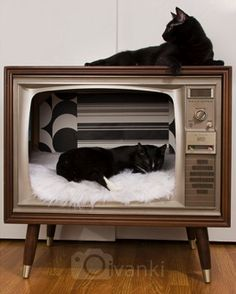 vintage tv turned cat bed Cats are beautiful. Pet Beds, Dog Bed, Cat Room, Animal Projects, Vintage Tv, Cat Furniture, Diy Stuffed Animals, Crazy Cats, Cool Cats