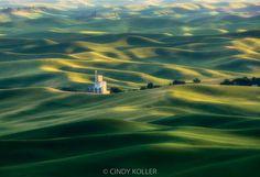 """""""Palouse, from Steptoe Butte"""" by Cindy Koller https://gurushots.com/cindy.koller/photos?tc=2f714573798c4445d3810149174a9e47"""