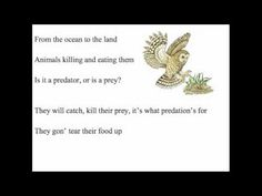 Here is a song I created to help my 6th grade students study. I hope you enjoy.    Ecosystem    Ecology how the living    Interacts with their home    Where they meet    Eat and greet other species in biomes    And the place where an organism lives, habitat    Provides the things an organism needs         Organisms of one species    Population- species grouping    Mo...