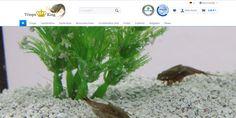 #Startup vorgestellt: Triops King - Onlineshop für Triops und Urzeitkrebse