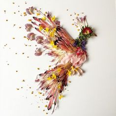 Artist Arranges Flowers, Leaves, Seeds Into Beautiful Works Of Nature - DesignTAXI.com