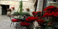 Restaurant Önü Çiçekli Avlu