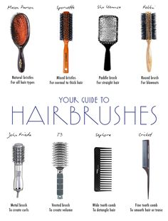 Click to find out which brush is best for your type of hair!