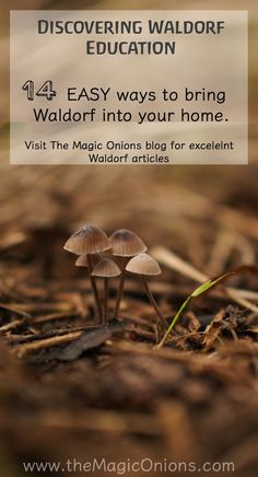 14 EASY ways to bring Waldorf into your home :: the Waldorf Home :: Discovering Waldorf Education :: http://www.theMagicOnions.com