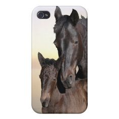 A mare and her baby foal iPhone 4s 5s 6s case