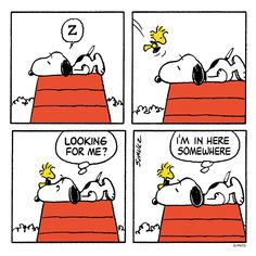 """PEANUTS on Twitter: """"In here somewhere... https://t.co/RIDHLx2r5L"""""""
