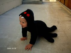 Image result for baby halloween costumes spider