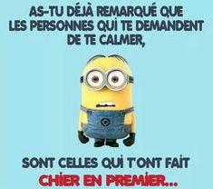 Minion Humour, Minion S, French Meme, Geek Humor, Im Bored, Life Advice, Haha, Messages, Funny