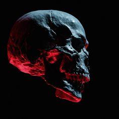 Skull Skull Reference, Light Study, Skull Artwork, Illustration Art, Illustrations, Human Skull, Vanitas, Monster, Dark Art