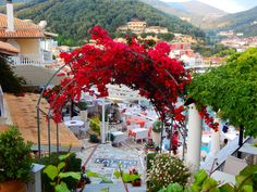 Parga Travel Guide – Town on the coast with the vibe of an island – The Passport Stamp Dear World, Passport Stamps, World Traveler, Greek Islands, Small Towns, Places To Travel, Travel Guide, Greece, Coast