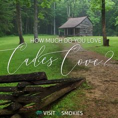 How much do you love Cades Cove? Grand Teton National, Yellowstone National Park, National Parks, Alaska Travel, Alaska Cruise, Travel New Mexico, Mountain Vacations, Viewing Wildlife, Tennessee Vacation