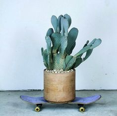 studded hearts mood board inspiration Cactus plant on skateboard