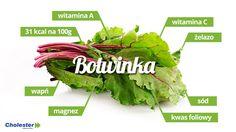 botwina-wlasciwosci-i-witaminy-2