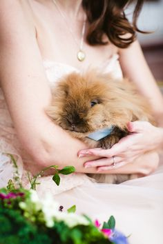 A Whimsical 'Peter Rabbit' Wedding Shoot For The Kid In All Of Us