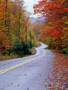 Photographic Print: Hollywood Rd at Route Adirondack Mountains, NY by Jim Schwabel : Great Places, Beautiful Places, Beautiful Roads, Path To Heaven, New England Fall, Adirondack Mountains, Autumn Scenery, Lake George, To Infinity And Beyond