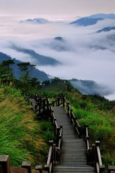 Stairs in the Clouds, Xiding, Alishan National Scenic Area, Taiwan, by Vincent_Ting