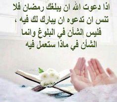 DesertRose ::: Ramadan Kareem