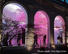 Lantern Field - The Smithsonian Freer Gallery of Art - Washington, DC