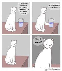 La verdadera cuestión del vaso. #humor #risa #graciosas #chistosas #divertidas