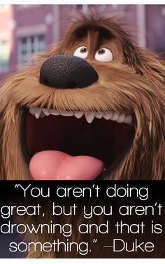 1 of the Top 25 Hollywood movies of 2016 The Secret Life of Pets Quotes - TOP Movie Quotes! Top Movie Quotes, Popular Movie Quotes, Favorite Movie Quotes, Funny Picture Quotes, Tv Quotes, Funny Pictures, Life Quotes, Funny Quotes, Animal Quotes