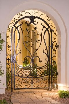Beautiful Wrought Iron Entrance. I would love to do something like this over frosted glass for my pantry door!