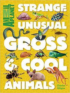 Animal Planet Strange, Unusual, Gross & Cool Animals: Animal Planet, Charles Ghigna: 9781618931665: Amazon.com: Books