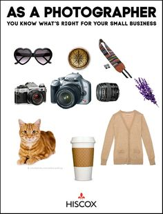 @Hiscox Pin it to win it. Photography tool kit necessities. Cats included of course