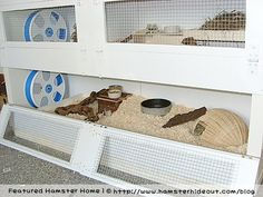 """Made from Ikea bookshelf """"Expedit"""" diy  hamster habitat. But you could also make different cages for different animals. :)"""