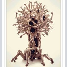 """Stacey Blair Rossi via FB - """"let me explain my thoughts on this ... being an """"empath"""" this describes me and so many other empaths so well... we are one tree of roots deep in the ground... holding strong.. while we have the souls of many others mingling around inside of us... influenceing us... making us grow or wither..... to me this is beyond fine art... I love pictures of trees.. out alone.. but this makes the """"tree"""" unified... I love it.. really love it"""""""