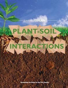Elementary science curriculum around plants! Download @ http://www.christianhomeschoolhub.spruz.com/science-1st---12th.htm #lessonplans #homeschool #edu