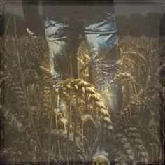Buy When I walked in Fields of Gold, Manipulated photograph (Giclée) by Alice van der Sluis on Artfinder.  #photography #alicevandersluis