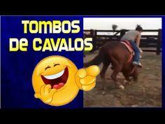 Video de Cavalos Engraçados - Os Tombos de Cavalos Mais Impressionantes