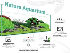 Nature Aquascaping Style by TheAquariumGuide.com