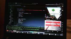 Abraçar a Natureza (prototype)  #android #ios #engennering #developer #development #programming #nativescript #javascript #xml #css #js #php #mysql #nodejs #ubuntu #lenovo #genymotion #atom #abracarnatureza