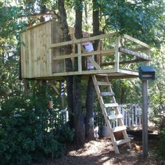 Daddy built awesome tree fort!!! Lots of found wood used!!