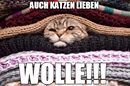 Birgit's Wollmarkt - Schwarzwaldgarn schreibt: Ein bisschen Spaß muss sein! ;) :D :D Einen schönen Feierabend euch allen! Birgit <3