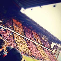 Bradford City fans Bradford City, Fans, Football, Soccer, Futbol, American Football, Soccer Ball