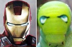 Lagarta que se parece com o Homem de Ferro: foto do inseto super-herói se torna viral