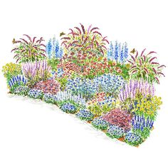 Ultimate Garden for Birds and Butterflies This big garden plan is packed with plants that will attract scores of butterflies and hummingbirds to your yard. Garden size: 12 by 20 feet.