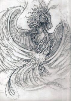 phoenix study sketch by posvibes.deviantart.com on @deviantART