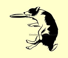 Border Collie Dog Catching Frisbee Play with Pets Animal Lover Bumper Sticker Decal Car Stencil Laptop Window Sticker Vinyl by TimeofReason on Etsy